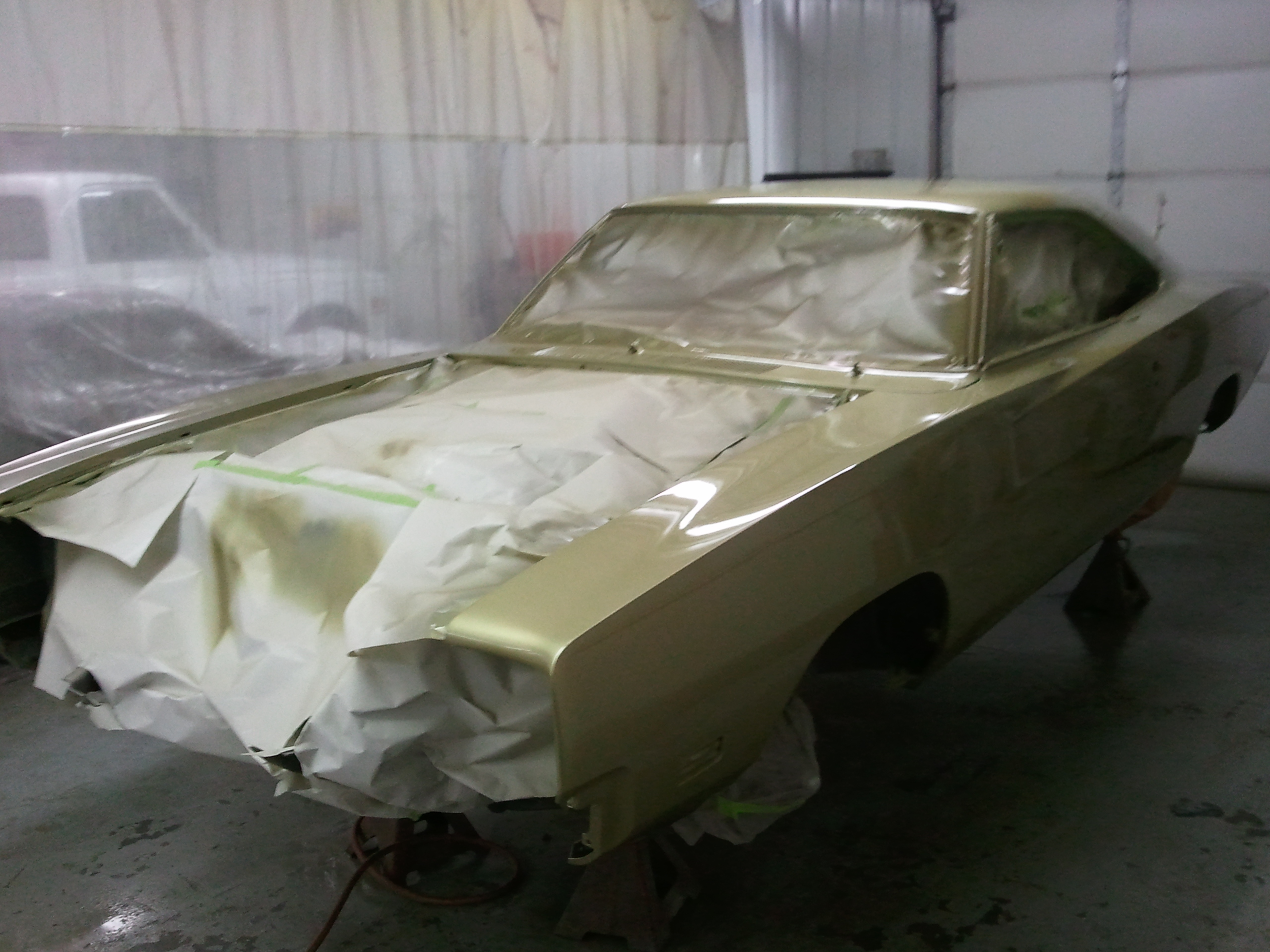 paint day